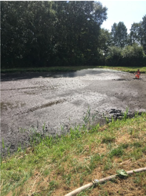 Behandlung der Regenwasserrückhaltebecken und Teiche